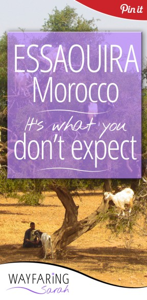 essaouira dont expect